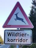 wildtierkorridor
